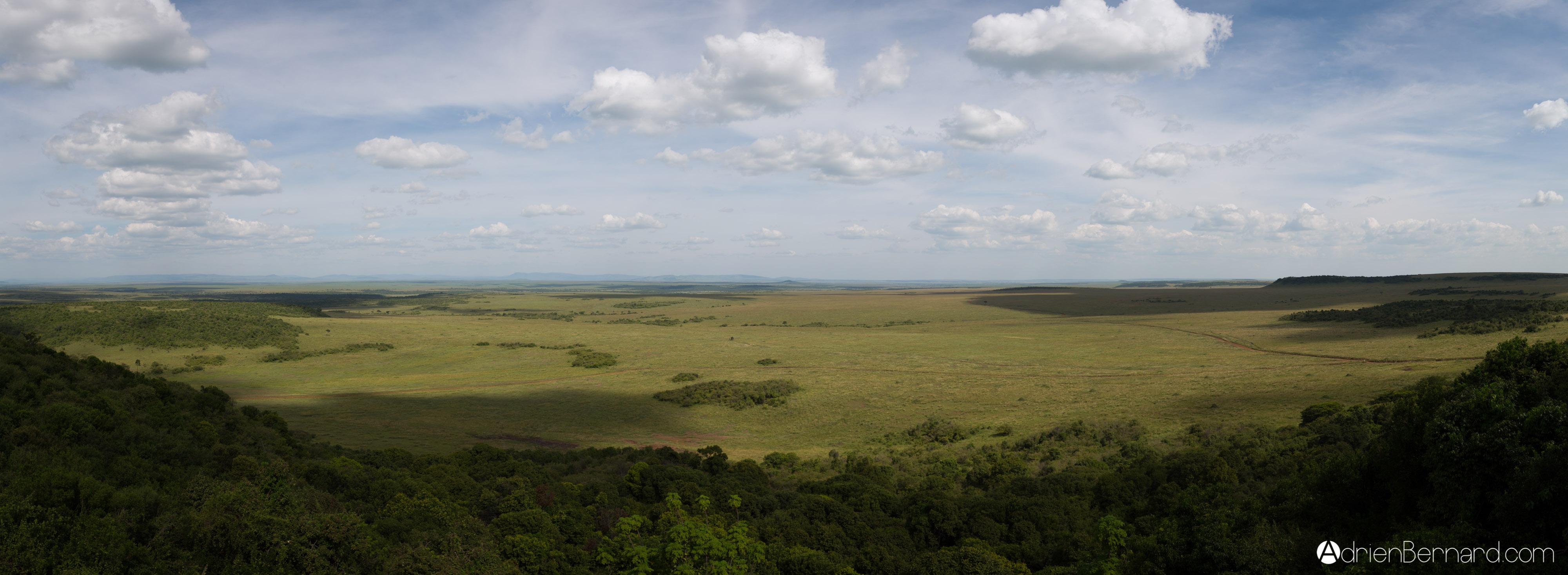 ADR 7684-Panorama